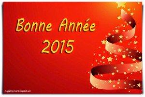 Cartes_Bonne_Ann_e_2015_1_